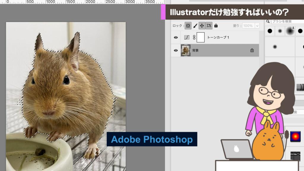 Photoshopでキリヌキ作業