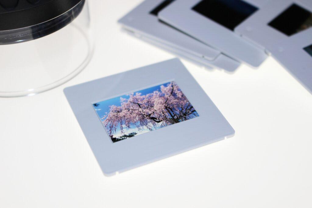 ポジフィルムの写真